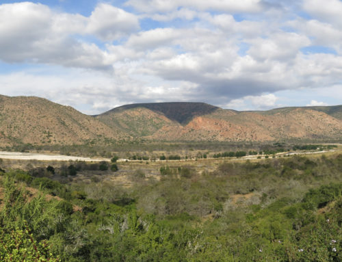 Where and what is Baviaanskloof?