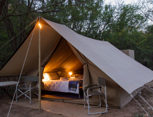 Glamping is the ultimate compromise.